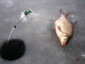 Малогабаритная зимняя удочка для рыбалки на льду